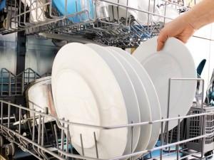 la lavastoviglie puzza