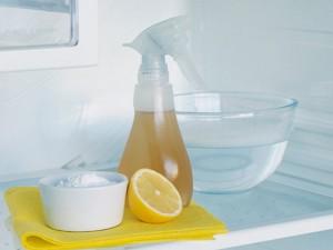 pulire il frigorifero con prodotti bio